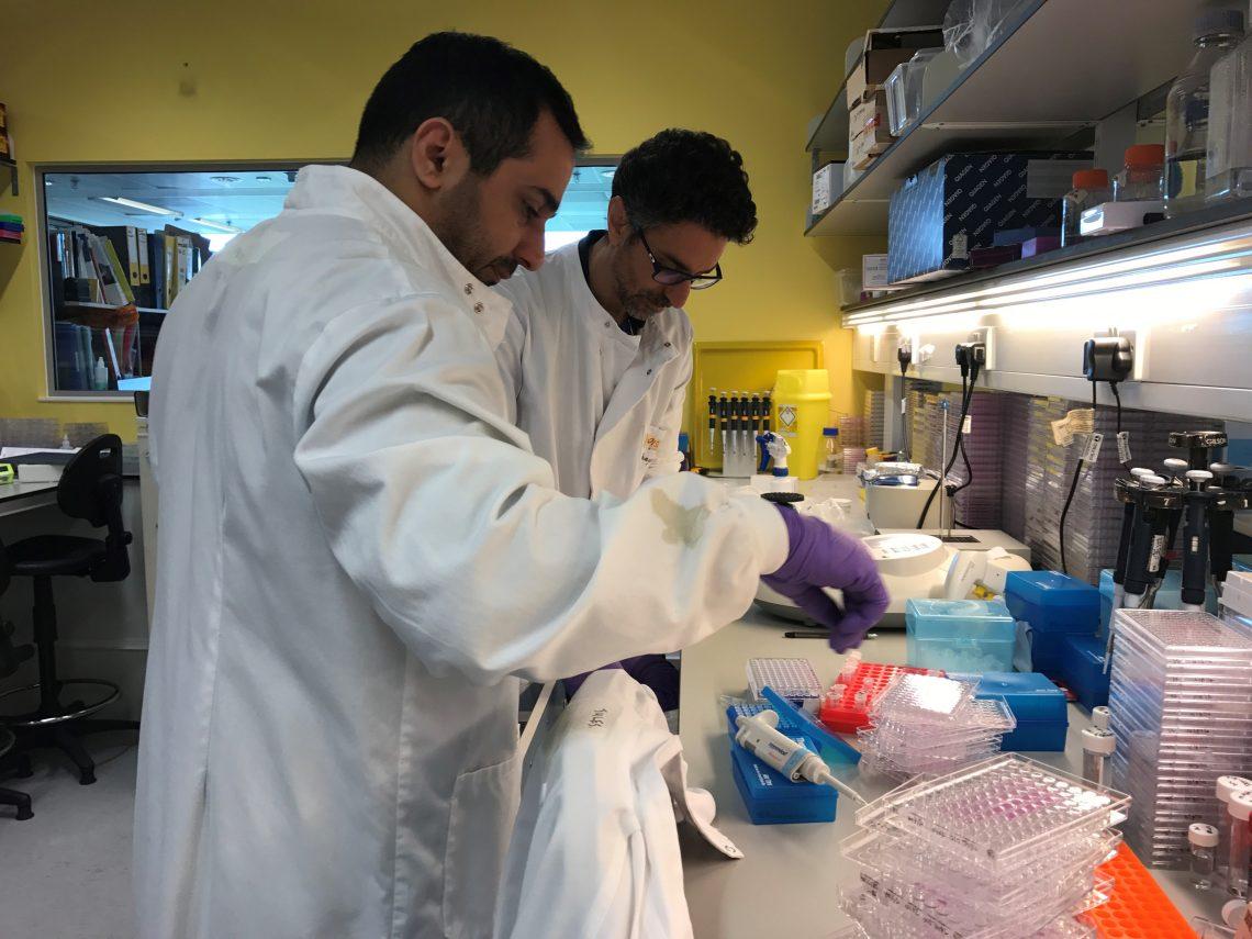 Combiz and Nabil post docs