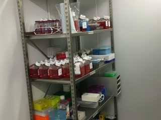 cell-culture-media-in-cold-room
