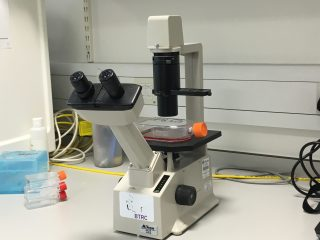 light-microscope-in-phase-1-of-lab-set-up