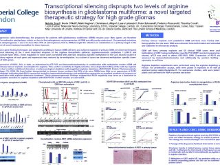 transcriptional-silencing-bnos-abstract-poster-2012