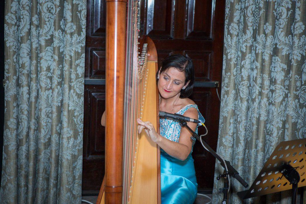 Harpist Les Magee